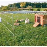 En løbegård er et lækkert sted for din kanin! (foto: lavprisdyrehandel.dk)