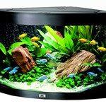 Pryd hjemmet med et fint akvarie (foto: lavprisdyrehandel.dk)